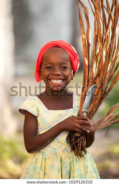 Stone Town, Zanzibar - January 20, 2015: Young Girl smiling with grass cuttings in hands