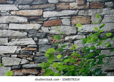 Stone wall as background