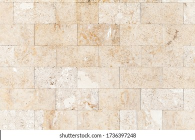 Stone wall made of shelly limestone, it is a highly fossiliferous limestone, composed of a number of fossilized organisms. Background texture, front view