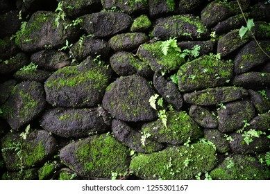 Stone wall with moss closeup. Nature Texture