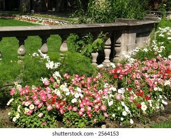 stone wall on a garden