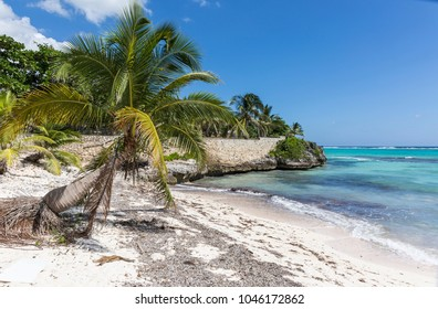 A stone wall and palm trees on Spotts Beach in Savannah on the South side of Grand Cayman, Cayman Islands