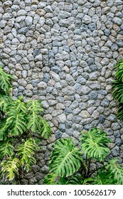 stone wall with tropical plants