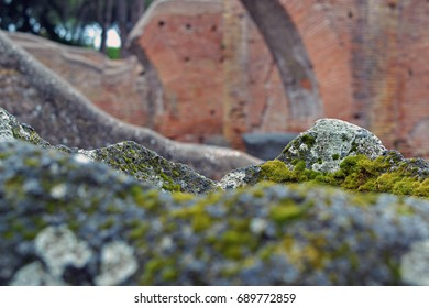Stones covered with moss inside Ostia Antica