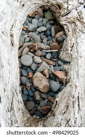 Stones Encircled by Wood