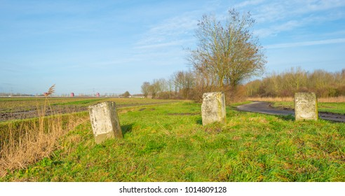 Stones in a field along buildings of a city on the horizon