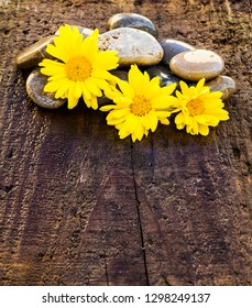 stones and flowers on a wooden background