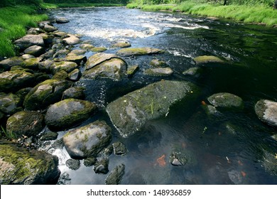 stones in a mountain river