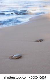 stones on the beach at sunset in Sri Lanka