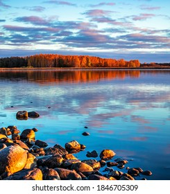 Stones on a lake beach. Orange trees and blue sky with colorful clouds reflected in a mirrored surface of calm water at sunset. Colorful autumn trees. Fall foliage. Scene of the coastline with forest.