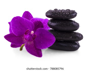 stones and orchid on the white background