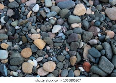 Stones pebbles and sea shells on a coastal beach