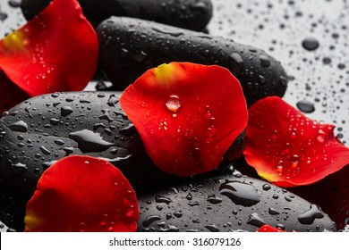 Stones with rose petals and drops of water on black background