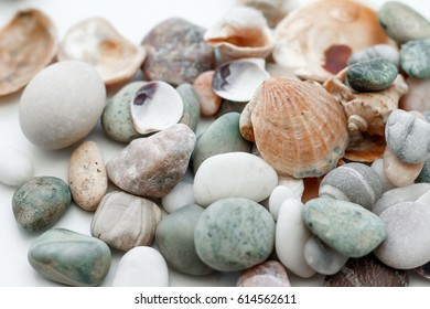 Stones and seashells in a vase on a white background. Reminder of the sea