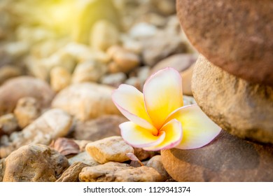 Stones stack in ZEN Concept with natural blurred background.