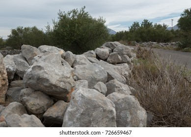 A stonewall next to a road in an olive tree field.