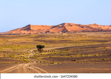 Stony plateau with curvy drive path with sand dunes at the background in the Sahara desert