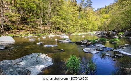 Stony river in spring forest under blue sky. Oslava river, Czech Republic, Europe - Shutterstock ID 1077418850