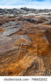 Stony rocky desert landscape of Iceland.