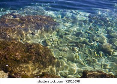 Stony seabed, Mediterranean Sea, Majorca, Spain