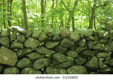 Stony wall in forest