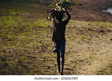 Stop Child Labour - Poor Children is carrying some sticks to sell them into a village market.