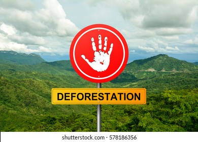 how to stop deforestation wikipedia