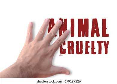 Stop hand against animal cruelty white background
