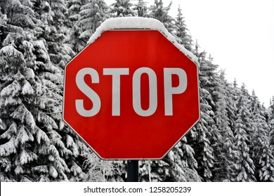 Stop sign covered with snow