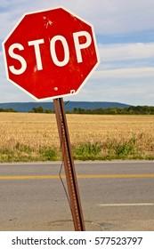 Stop Sign, portrait