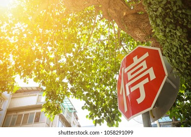 Stop sign with trees and green leaves. The Chinese word means stop.  Concept of Rest, relaxation, vacation, tourism, lifestyle.