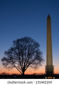 Stop signal light in Washington, DC