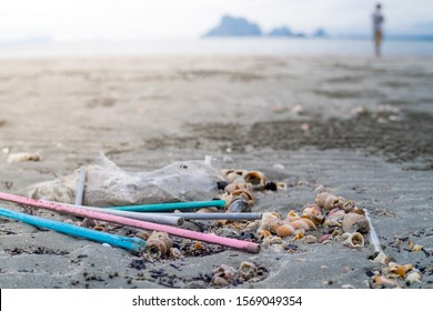 Stop using Plastic straws, Stop plastic pollution on sea, the refusal of disposable plastic drinking straws.