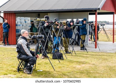 Stora ror, Sweden - April 7, 2018: Documentary of everyday life and environment. Bird watchers looking for migrating birds returning in spring. Information and wind shelter in background.