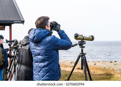 Stora ror, Sweden - April 7, 2018: Documentary of everyday life and environment. Male bird watcher looking for migrating birds returning in spring using binoculars.