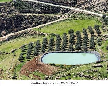 Storage basin for the irrigation of an olive grove in the desert near Karak, Jordan, middle east