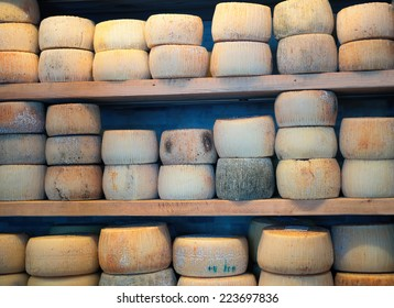 storage of cheese products. Cheese Factory