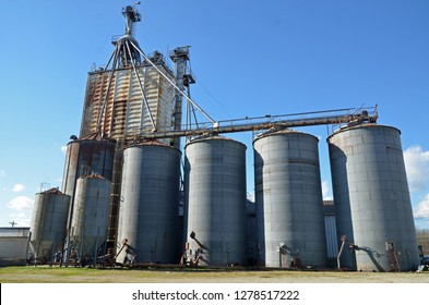 Storage silo elevator for grain and feed at a feed plant near farms for agricultural use against a brilliant blue sky.