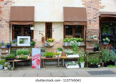 Store front of florist shop and display of garden plants, blooming flowers, stylish home decorations with creative design and Open sign