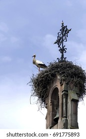 Stork in his nest built on church bell tower