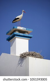 Stork next to the nest on top of a chimney of a house in Alentejo, Portugal.