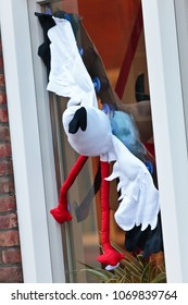 Stork on a Dutch window announcing the birth of a new child