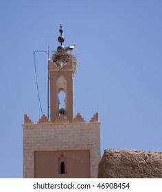 Stork on Islamic mosque minaret, Morocco