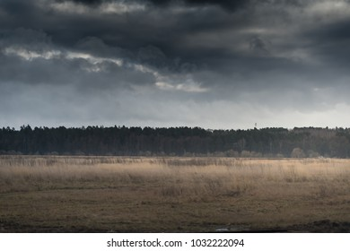 Storm Clouds above a field and forest.