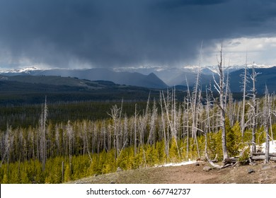 Storm Clouds Over Old Forest and Mountains