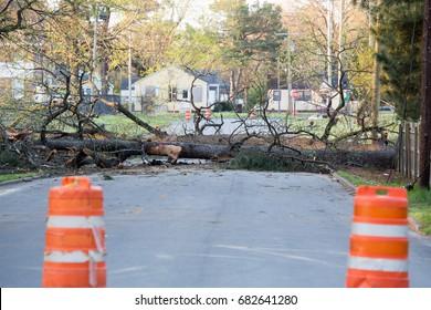 Storm damage tree down blocking road danger