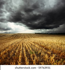 Storm dark clouds over field with wheat's stems