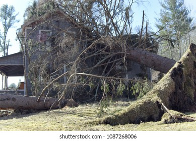 Storm Destruction Devastation