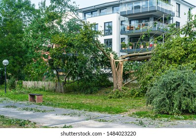 Storm effects and tornadoes over the city. Destroyed city park. Broken trees. Destruction in nature. Panorama after the storm.