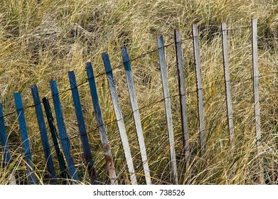Storm fencing (sometimes known as hurricane fencing) in marshland reeds in the autumn.
